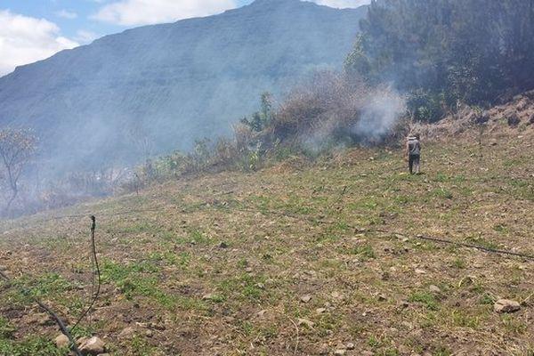 feu de broussaille à Salazie