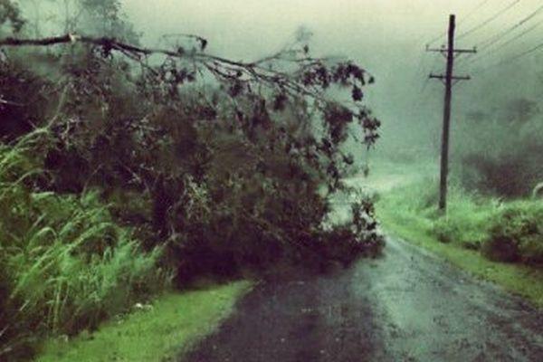cyclone evan 3