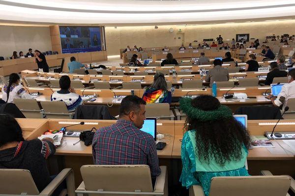 Les représentants des peuples autochtones au Palais des Nations de Genève