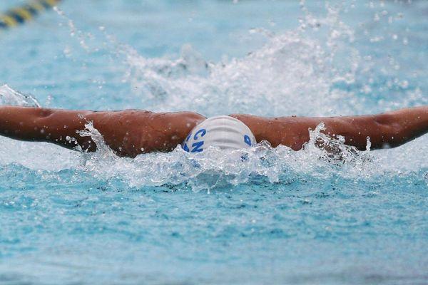 natation qatar