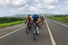 Coureurs cyclistes sur les routes de Martinique.