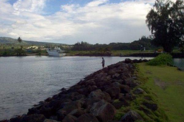 Faratea : l'idée d'un hub de pêche refait surface