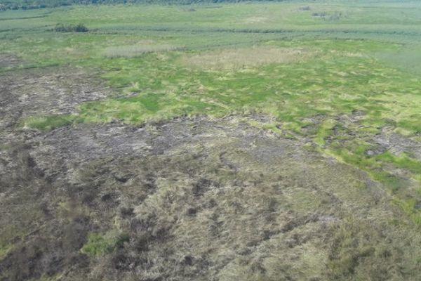 Une enquête va être ouverte pour déterminer l'origine de l'incendie qui a touché la réserve naturelle de l'Etang Saint-Paul, samedi.