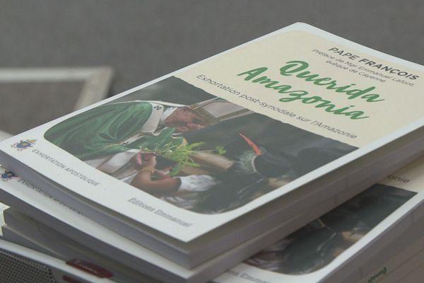 Livre du Pape François sur l'Amazonie