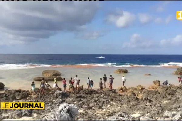 Opération « atoll propre » à Makemo