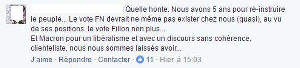 Facebook contre Le Pen