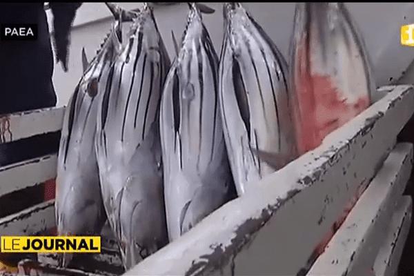 L'Etat déclare la guerre aux pêcheurs illégaux.
