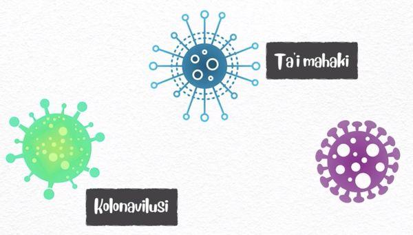 Extrait de la vidéo sur le coronavirus en wallisien