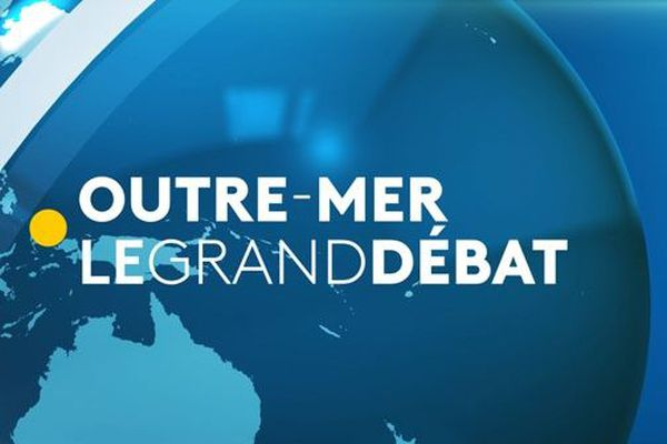 Grand débat visuel article
