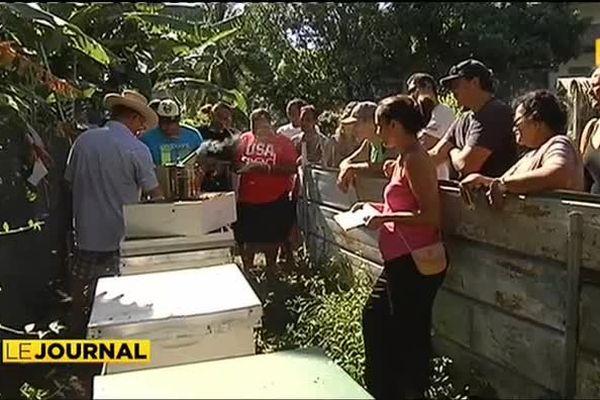 L'apiculture, ressource complémentaire