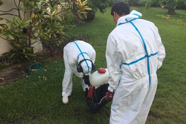Dengue 2 pulvérisations Mahina