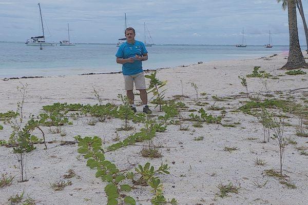 Butaud Polynésie