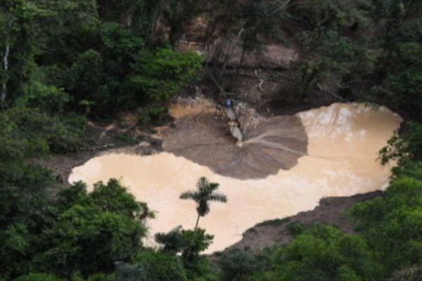 Orpaillage clandestin : les aires protégées des Guyanes échangent sur leurs stratégies de lutte