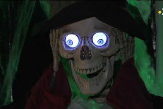 Halloween : une fête importée à SPM dans les années 90