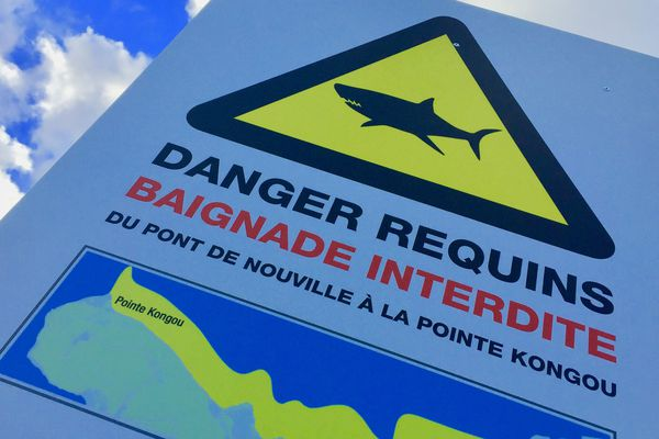 Panneau danger requins au pont de Nouville