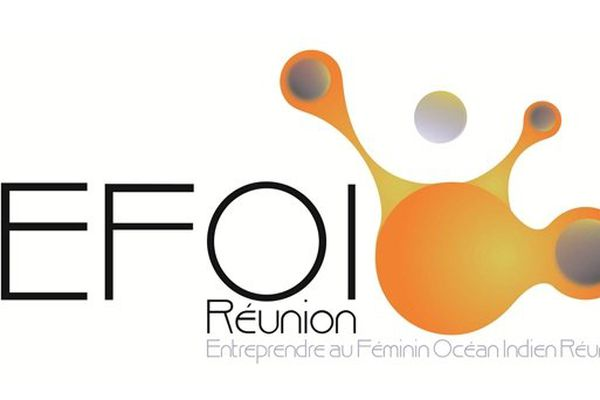 EFOIR Logo