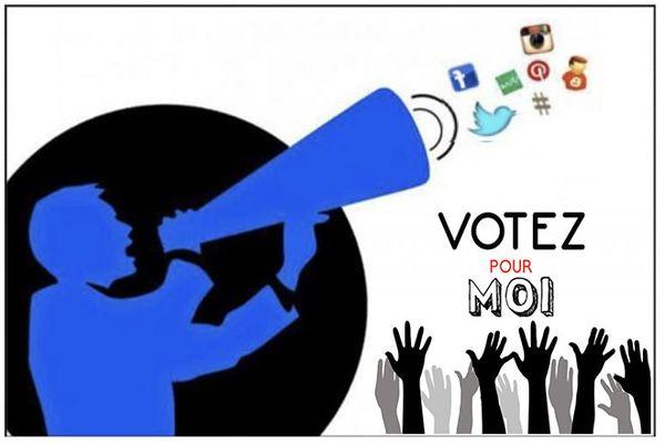 Vote par internet