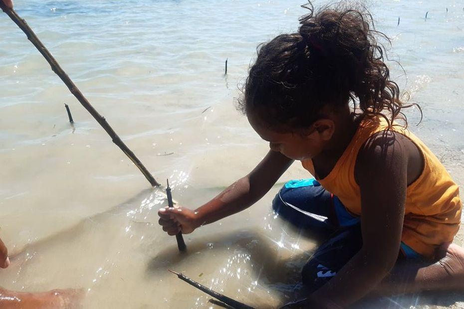 Aux petits soins avec la mangrove de Ouano - Nouvelle-Calédonie la 1ère