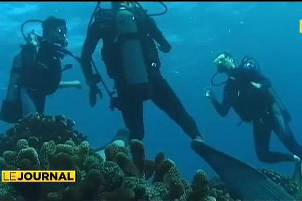 Banalisée, la plongée demeure une activité à risque