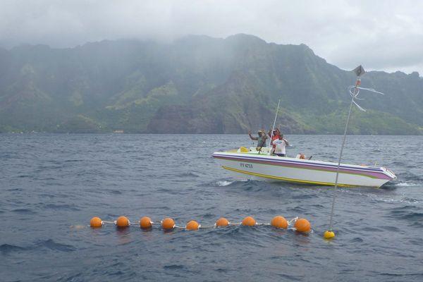 De nouveaux DCP à proximité des côtes des îles Marquises