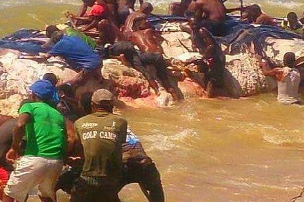 Baleine échouée à Madagascar
