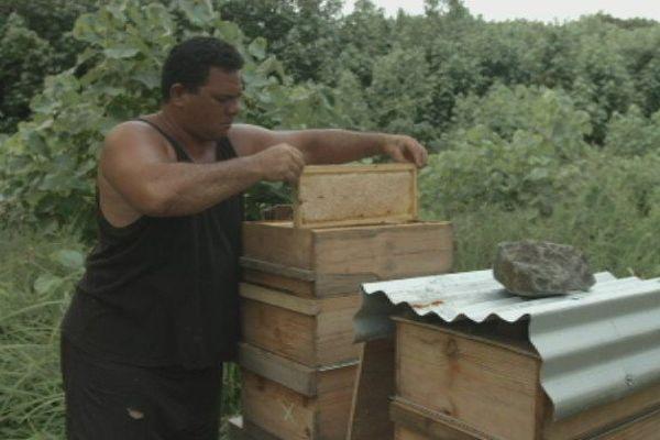 Le miel de Tubuai est de retour
