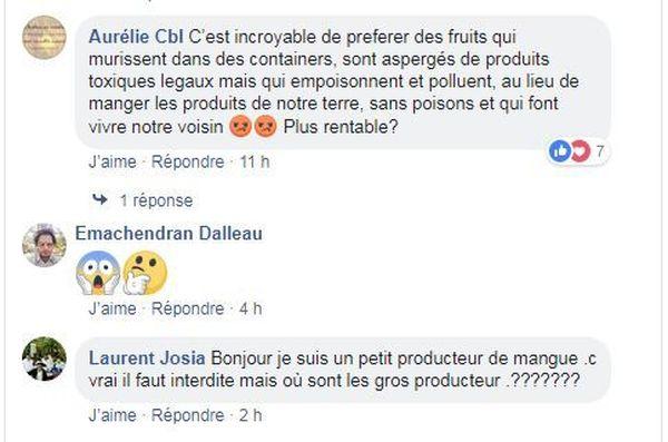 réactions facebook aux mangues égyptienne