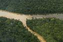 Du mercure dans l'eau et les poissons: une conséquence de l'orpaillage en Guyane