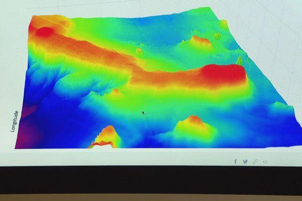 Observation des baleines : monts sous-marins