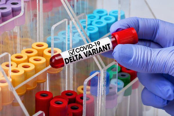 variant Delta