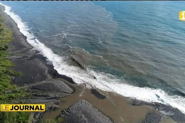 Attaques de requin : Les surfeurs veulent un « abattage massif »