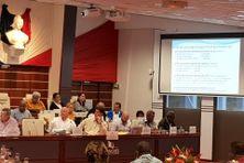 Yoann Lecourieux présentant au Congrès le projet de budget supplémentaire pour 2020.