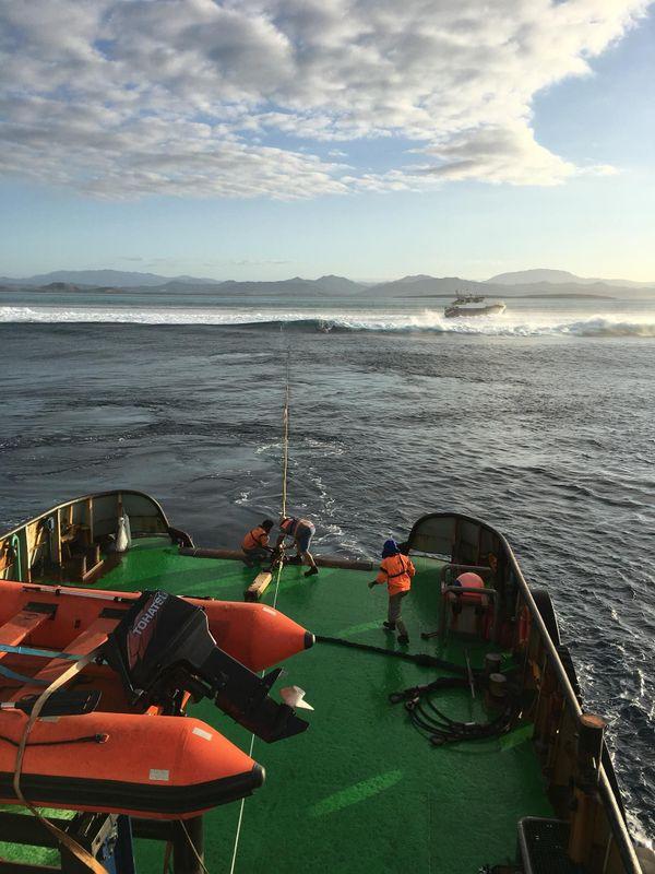 Ocean Wanderer
