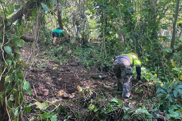 Opération de nettoyage de la liane du diable à Nukufotu