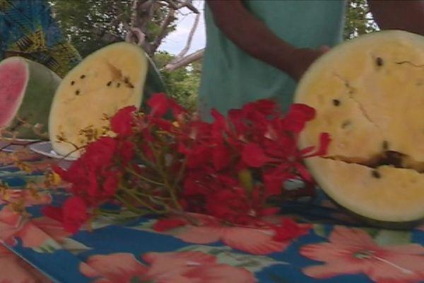 Les pastèques de Tiga