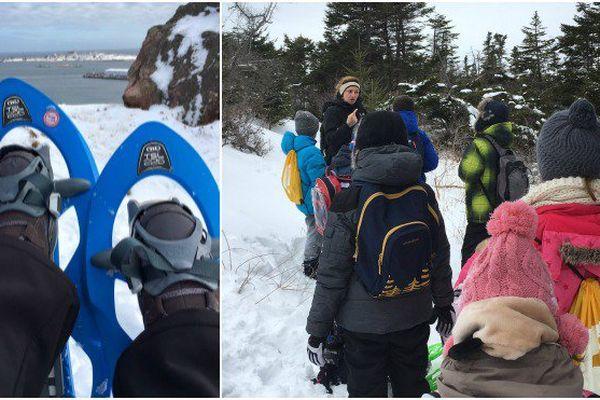Les enfants de l'archipel découvrent la nature en raquettes