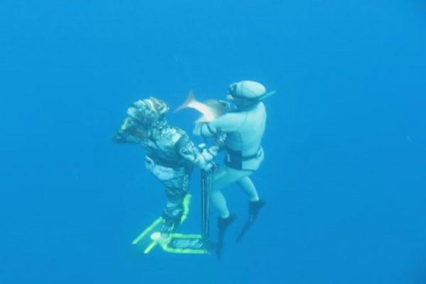 pêche sous marine