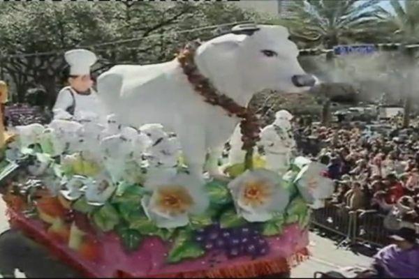 Boeuf gras carnaval nouvelle-orléans