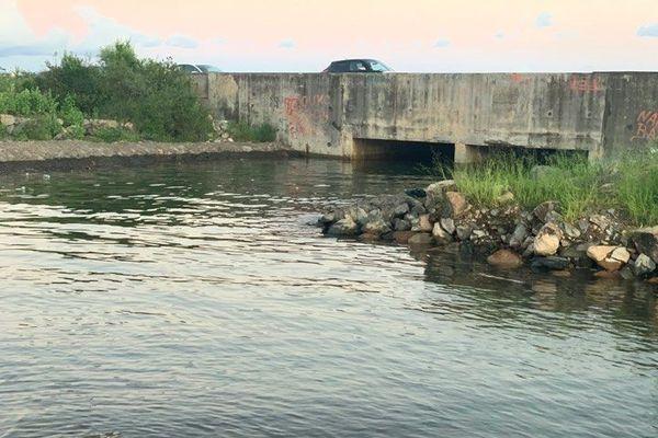 plan d'eau Mtsapéré