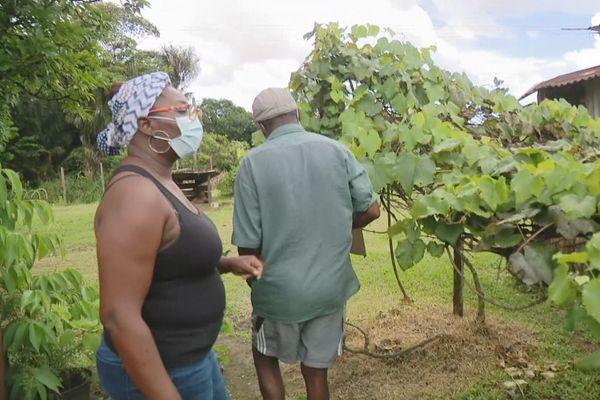 Apouyou et sa fille au quartier Vampire présentent leur raisin