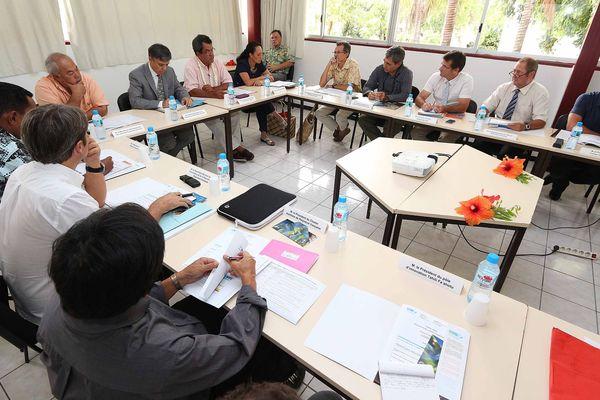 Comité pilotage ressources minérales