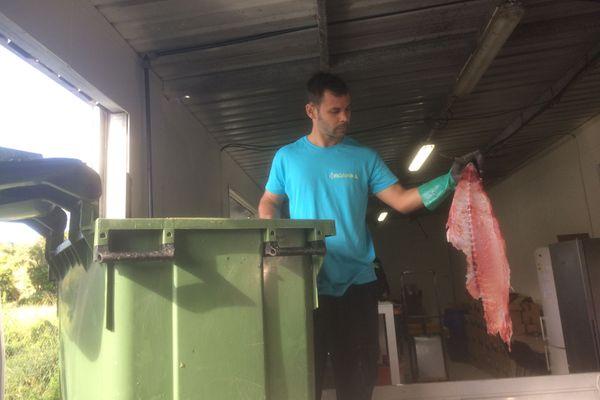 valorisation déchets de poisson. Engrais
