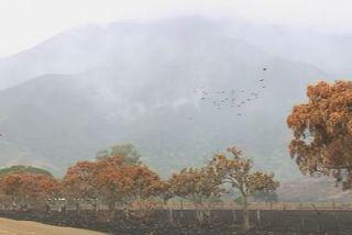 Incendie à Païta sur Karenga
