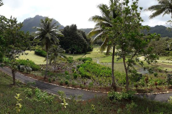 Jardin Faaroa