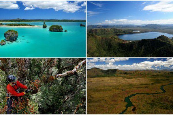 Iles des Pins, Chutes de la madeleine, collecte botanique et la rivière des lacs