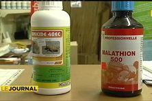 Le Malathion « probablement cancérigène » d'après l'OMS