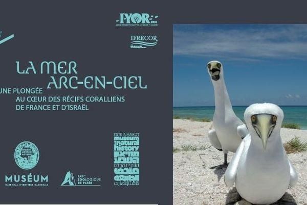"""Panneau de l'exposition """"La mer arc-en-ciel"""""""