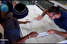 Le CETAD de Nuku Hiva forme aux métiers de l'aquaculture