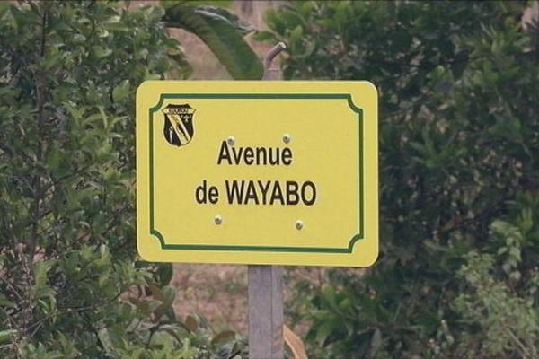 Wayabo