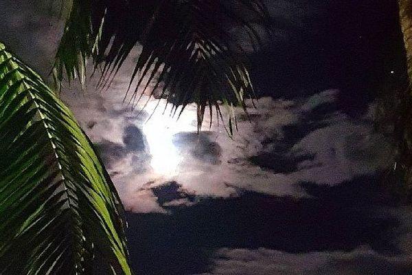 Nuit sous les tropiques